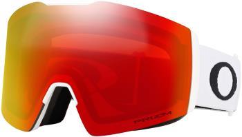 Oakley Fall Line L Prizm Torch Snowboard/Ski Goggles, L White