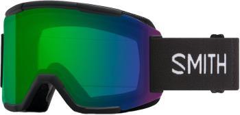Smith Squad CP Everyday Green Snowboard/Ski Goggles M Black