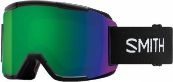 Smith Squad CP Sun Green Mirror Snowboard/Ski Goggles, M Black