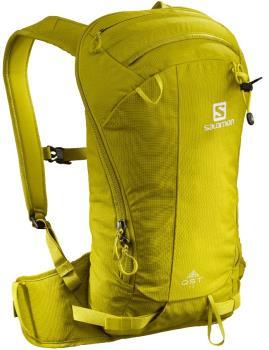 Salomon QST 12 Ski/Snowboard Backpack, 12L Citronelle