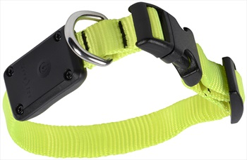 Nite Ize Nite Dawg LED Dog Collar Light Up Pet Collar, XS Neon Yellow