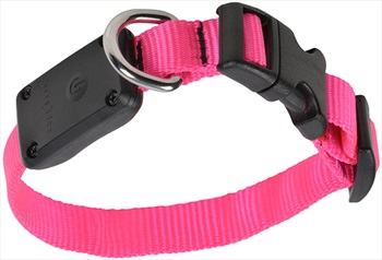 Nite Ize Nite Dawg LED Dog Collar Light Up Pet Collar, XS Neon Pink
