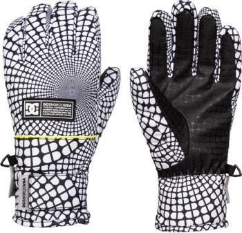 DC Franchise Women's Ski/Snowboard Gloves, L Opticool