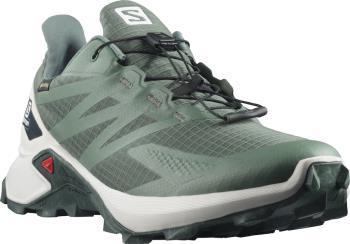 Salomon Adult Unisex Supercross Blast Gore-Tex Running Shoes, Uk 8.5 Balsam Green