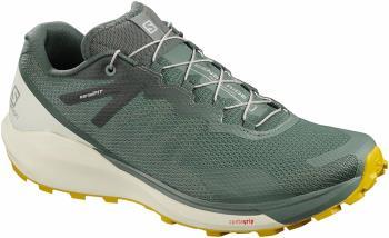Salomon Sense Ride 3 Trail Running Shoe, UK 12.5 Balsam Green