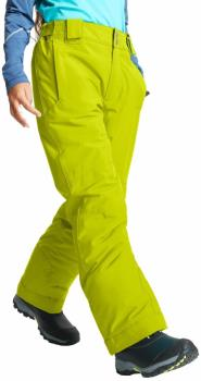 Dare 2b Outmove II Kid's Snowboard/Ski Pants, Age 9-10 Lime Punch