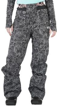 Picture Slany Women's Ski/Snowboard Pants, S Feathers
