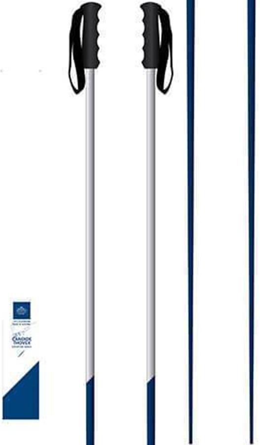 Faction Candide Thovex Pair Of Ski Poles, 135cm Blue/White