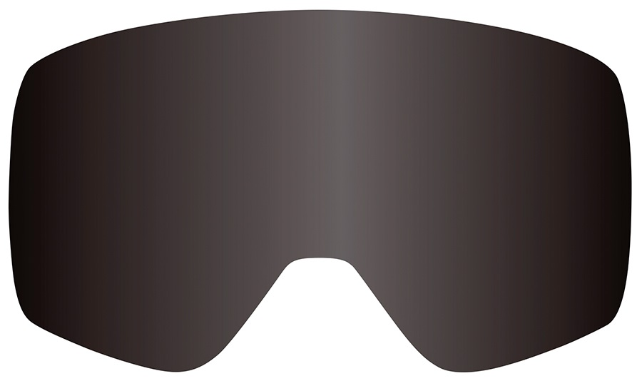 Dragon NFXs Snowboard/Ski Goggles Spare Lens Dark Smoke