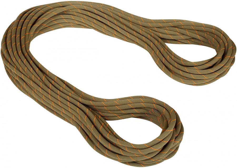 Mammut 9.9mm Gym Workhorse Classic Rope Rock Climbing Rope, 30m X 9.9mm Boa
